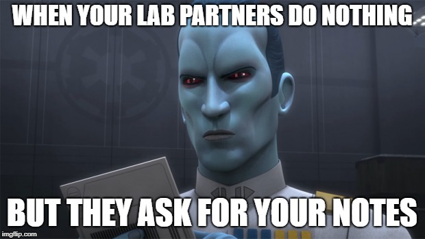 bad lab partner